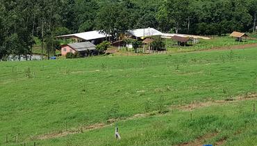Propriedade Venda Sítio - e-rural Imagens