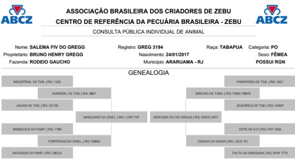 Bovino Corte Tabapuã Bezerra - e-rural Imagens
