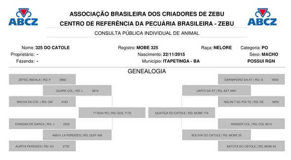 Bovino Corte Nelore Touro 16-20@ Andrológico em dia - e-rural Imagens