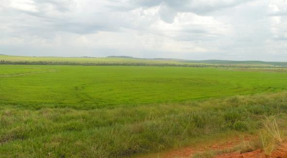 Propriedade Venda Fazenda Agricultura - e-rural Imagens