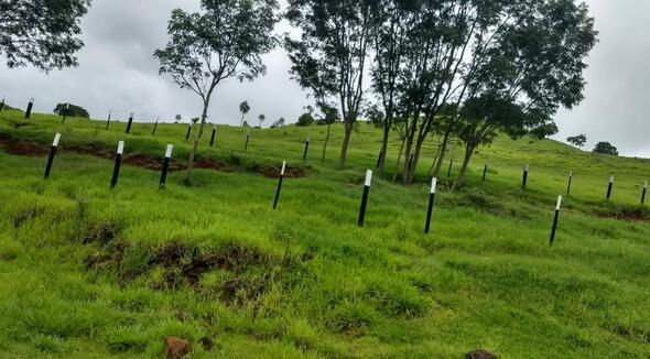 Propriedade - e-rural Imagens