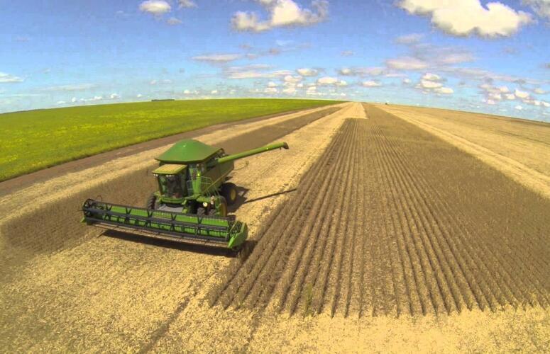 Alta de 5,26% no PIB do agro