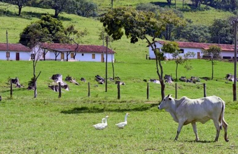 Prazo para o proprietário rural entregar declaração do ITR termina no dia 30