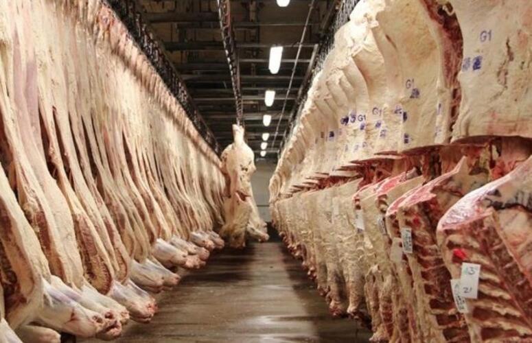 Importação de carnes pela China cresce 63% em setembro