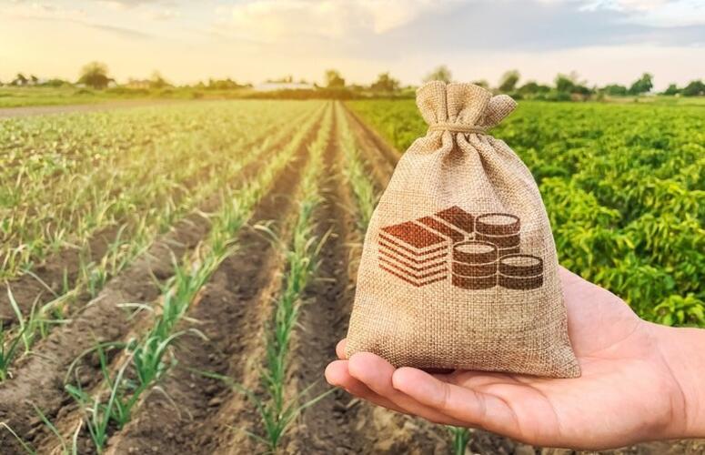 Produção agropecuária de 2020 alcança R$ 871 bilhões