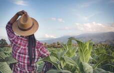 Capa - ABCZ Mulher homenageia personalidades femininas do agro durante a ExpoZebu.