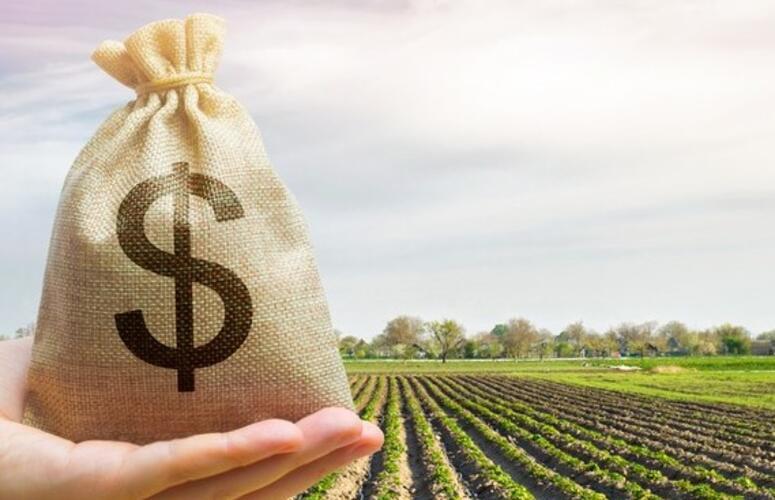 Governo libera R$ 693 milhões para o Programa de Seguro Rural em 2021.