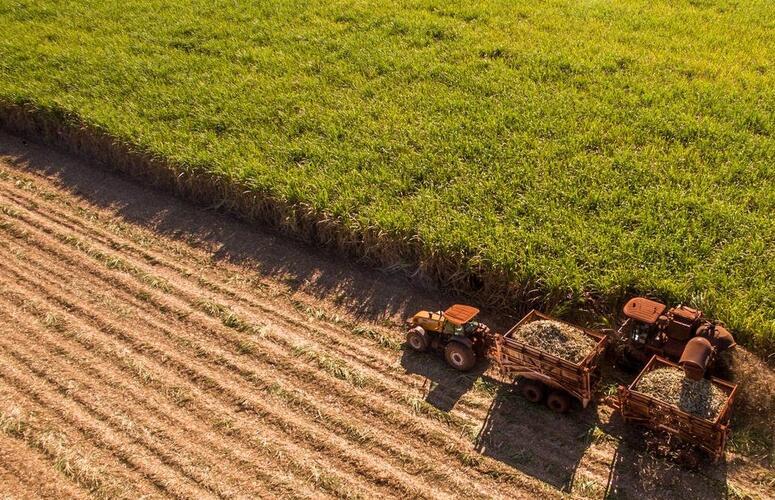 Exportações do agro com resultados impressionantes.