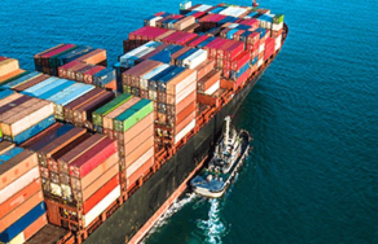 Boi/Cepea: Exportação completa três anos de volume mensal acima de 100 mil t
