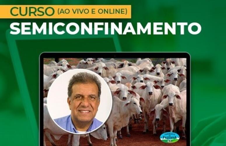 Curso Semiconfinamento (ao vivo e online) tem inscrições abertas para este mês de agosto 2021