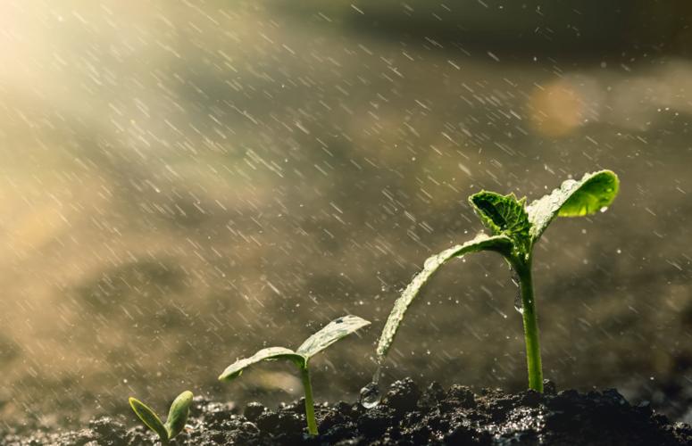 Semana começa com chuva em grande parte do país