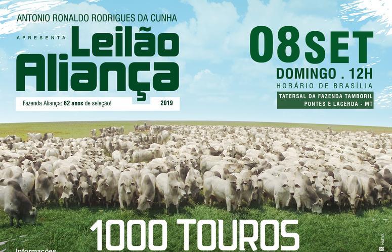 1000 touros de alto padrão