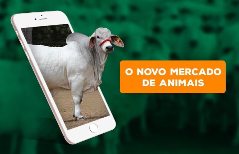 O novo mercado de animais