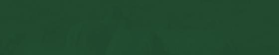 65° Leilão Virtual Lemgruber Elite de Pasto 2020