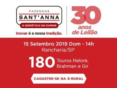 30 anos de leilão, Fazenda Sant'Anna