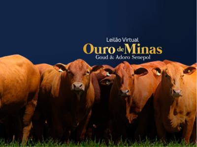 LEILÃO VIRTUAL OURO DE MINAS GOUD & ADORO SENEPOL