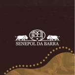 LEILÃO VIRTUAL TOUROS SENEPOL DA BARRA