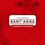 31º LEILÃO VIRTUAL FAZENDAS SANT ANNA