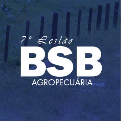 7º LEILÃO VIRTUAL BSB AGROPECUÁRIA