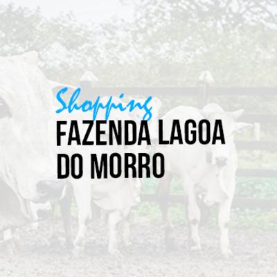 FAZENDA LAGOA DO MORRO AGROPECUÁRIA