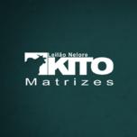 LEILÃO NELORE KITO MATRIZES