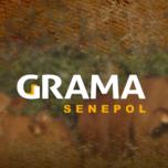 LEILÃO VIRTUAL VITRINE GRAMA SENEPOL