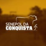 12º LEILÃO VIRTUAL GENÉTICA SENEPOL