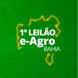 1° LEILÃO E-AGRO BAHIA