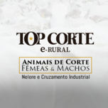 4º LEILÃO TOP CORTE E-RURAL