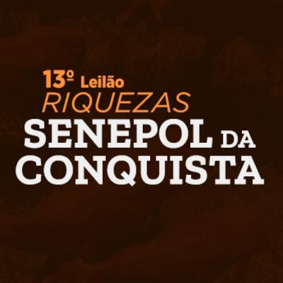 13º Leilão Riquezas Senepol da Conquista