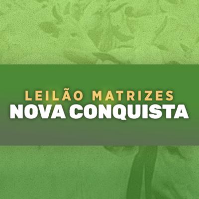 LEILÃO MATRIZES NOVA CONQUISTA