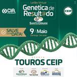 LEILÃO VIRTUAL GENÉTICA DE RESULTADO SANTO ERNANI