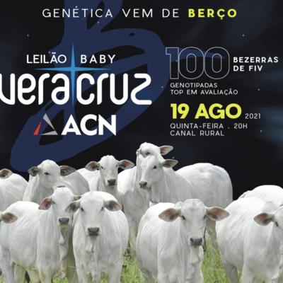 LEILÃO BABY VERA CRUZ & ACN