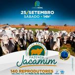 Leilão Especial Fazenda Jacamim