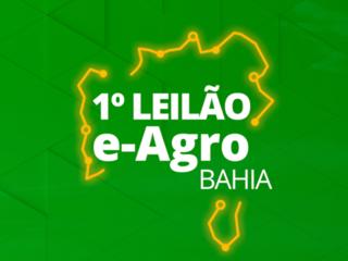 1º LEILÃO E-AGRO BAHIA