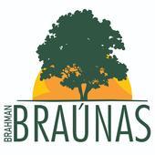 Fazenda Braúnas - e-rural Imagens