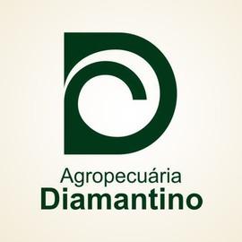 Agropecuária Diamantino