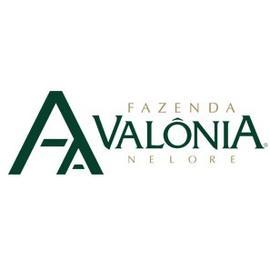 Fazenda Valonia